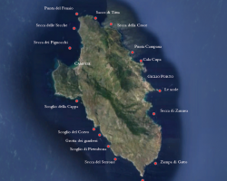 Diving Spots Giglio
